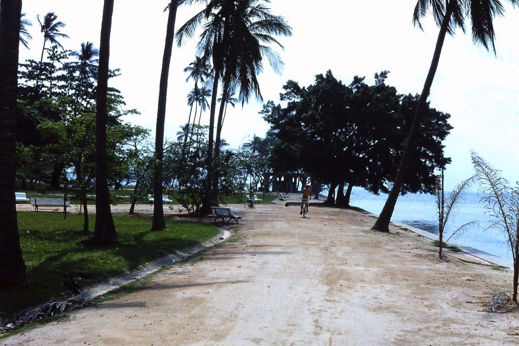 Weg auf der Ilha Paqueta